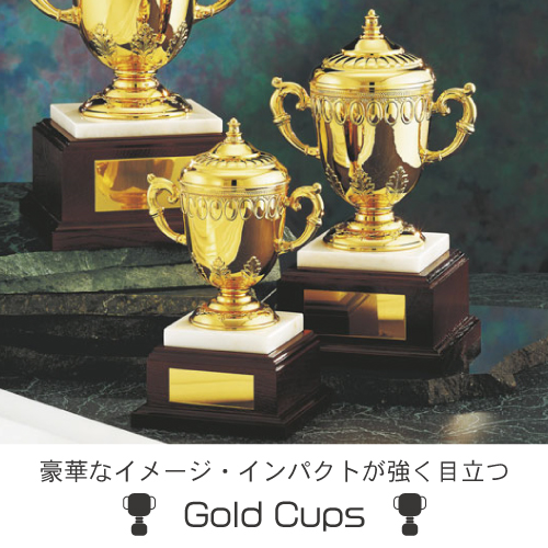 ゴールドカップ案内画像